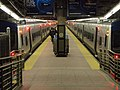 Grand Central Station Züge.jpg