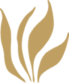 Grass Leaves Ornament Gold Left.png