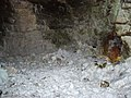 Grime's Graves Flint Mine - geograph.org.uk - 1318810.jpg