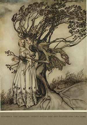 The Old Woman in the Wood - Arthur Rackham, 1917