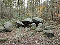 Großsteingrab in der Kunkenvenne 1.jpg