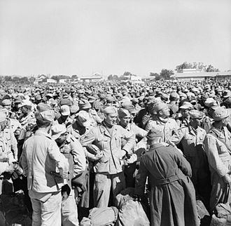 Tunisian Campaign - German and Italian prisoners of war, following the fall of Tunis, 12 May 1943.