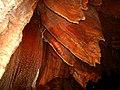 GrotteMadeleine 136.jpg