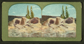 Grotto Geyser Cone After Eruption, Upper Geyser Basin,Yellowstone National Park, from Robert N. Dennis collection of stereoscopic views.png