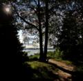 Grunewald grosses-fenster 2021-08-24.png