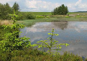 River Gryfe - The Gryfe Reservoir