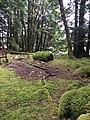Gwaii Haanas National Park (27554254735).jpg