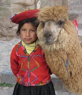 Quechua people - Image: Gwalpaca