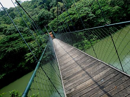 A hanging bridge in ecotourism area of Thenmala, Kerala in India - India's first planned ecotourism destination HANGING BRIDGE THENMALA.JPG