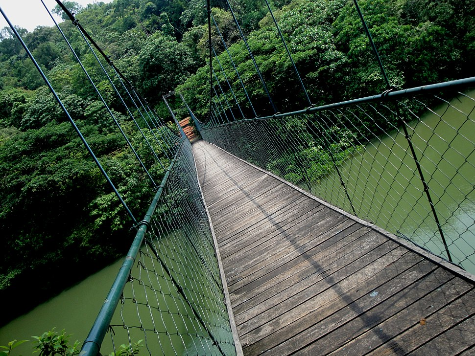 HANGING BRIDGE THENMALA