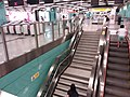 HK 堅尼地城站 MTR Kennedy Town Station concourse stairs n escalators August 2018 SSG.jpg