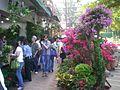 HK Mongkok Flower Market Road 21.JPG