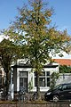 Haarlem - Bakenessergracht 39.JPG