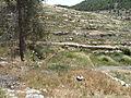 Hadassah Trail P1150495.JPG