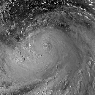 Typhoon Hagibis (2019) Pacific typhoon in 2019