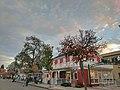 Hartz Avenue Danville California.jpg