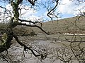 Helford River - geograph.org.uk - 740013.jpg