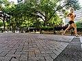 Hemming Park Jogger.jpg