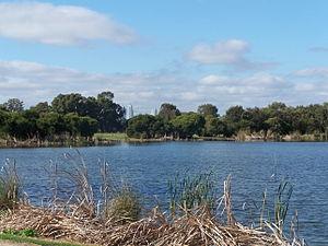 Herdsman Lake - Image: Herdsman lake gnangarra
