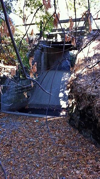 Hidden Villa - This drop under the Hidden Villa bridge is one of several barriers to steelhead trout spawning runs on Adobe Creek