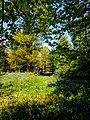 Hodsock Priory, Near Blythe, Notts (60).jpg