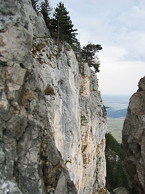 Hohe Wand (mountain) - The Hochfallwand rock face on the south side of the Hohe Wand, seen from Wildenauersteig