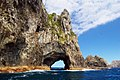 Hole In The Rock In Bay Of Islands.jpg