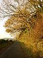 Holy Well Lane - geograph.org.uk - 1548779.jpg