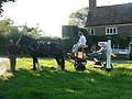 Horse and cart having a break - geograph.org.uk - 558603.jpg