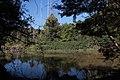 Howick Waterfall - panoramio.jpg
