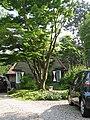 Huizen-patrijslaan-184561.jpg