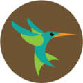Hummingbird Clayton.png