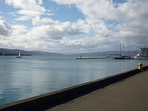 Hutt River (New Zealand) - A view across Wellington Harbour looking towards the mouth of the Hutt River