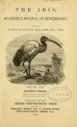 Ibis journal cover 1922.jpg