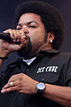 Ice Cube (6934070216).jpg