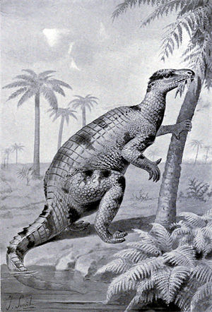 Nineteenth century painting showing Iguanodon ...