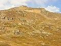 Independance Pass, 3686 mtr - panoramio.jpg