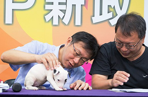 "Independent Taipei Mayoral Candidate Ko Wen-je pets a dog on a Press Conference ""Friendly City for Animals"" 獨立臺灣臺北市長候選人柯文哲逗弄小狗"
