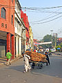 India-0254 - Flickr - archer10 (Dennis).jpg