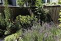 Innenhofgarten im Frühsommer 10.jpg
