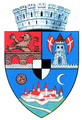 Interbelic Timisoara CoA.png