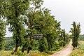 Izvoare – Risipeni, monument al naturii img 019. Traseul spre Izvoare.jpg