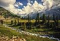 Jahaaz banda meadows-heaven on earth.jpg