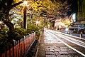 Japan Gion Rush Hour (15473093849).jpg
