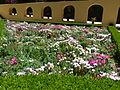 Jardim do Cerco pertencente ao Convento de Mafra (6).jpg
