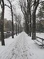 Jardin du Ranelagh - neige 16.jpg