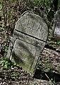 Jewish cemetery Zelechow IMGP3179.jpg