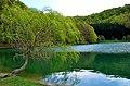 Jezera Balkana VI.jpg