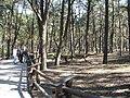 Jurapark, Solec Kujawski, Poland (www.juraparksolec.pl) - panoramio (36).jpg