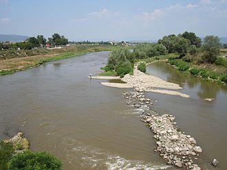 South Morava - The river Južna Morava (Southern Morava) near Niš